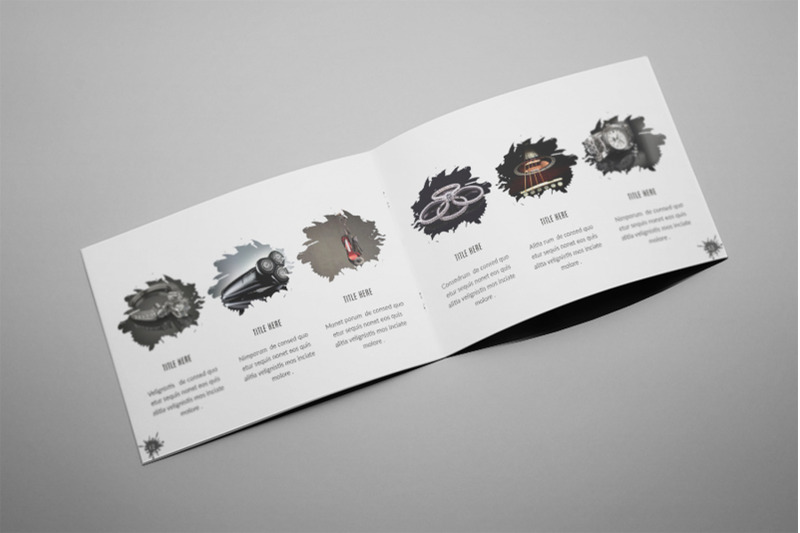 aliva-a5-photography-splash-brochure-template