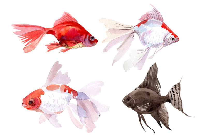 fairytale-red-goldfish-watercolor-png