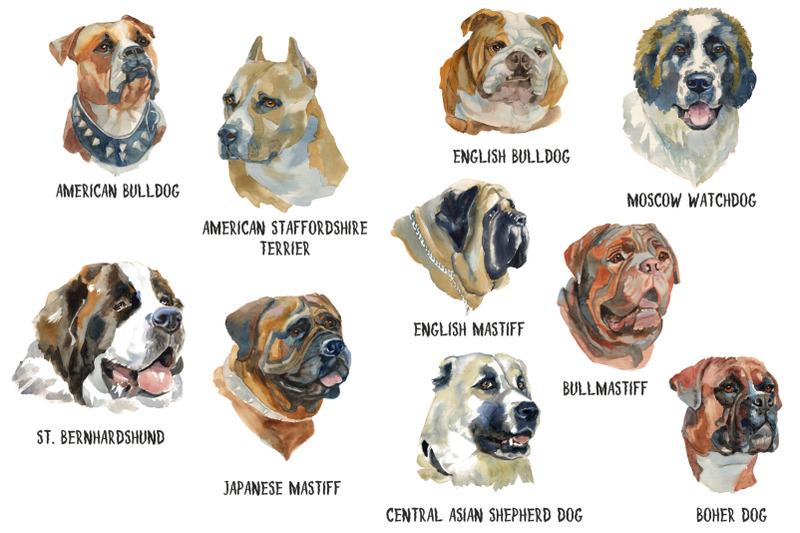 best-guard-dogs