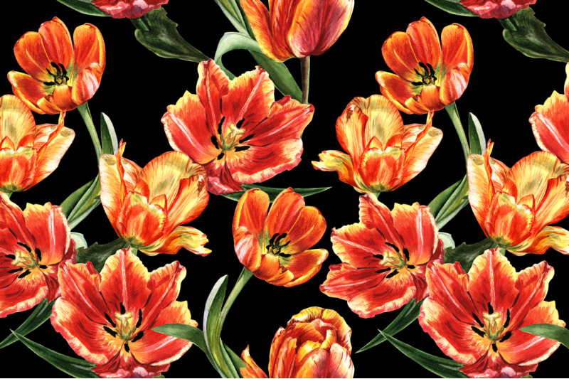 tulip-red-png-watercolor-flower-set