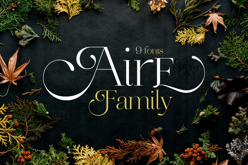 aire-family-font