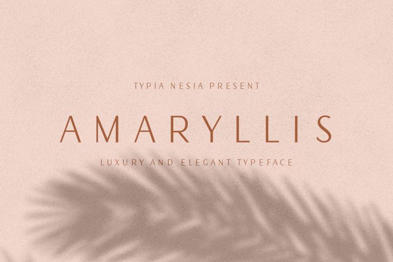 amaryllis-sans