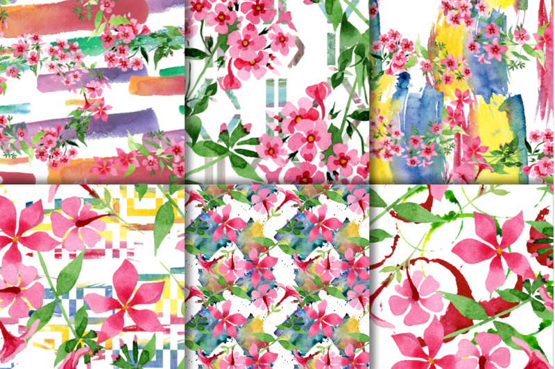 pink-phlox-flower-watercolor-png