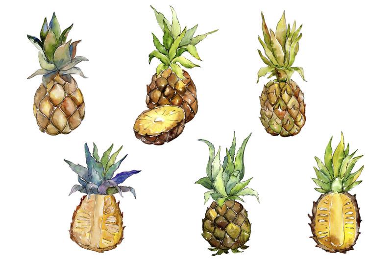 fruit-buffet-buffet-watercolor-png