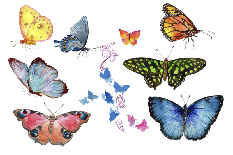 miracle-of-nature-butterflies-watercolor-png