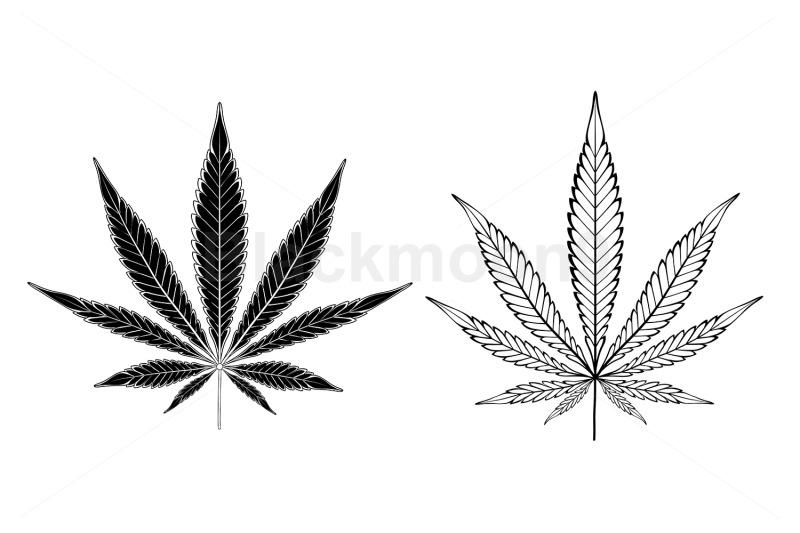monochrome-cannabis-leaves
