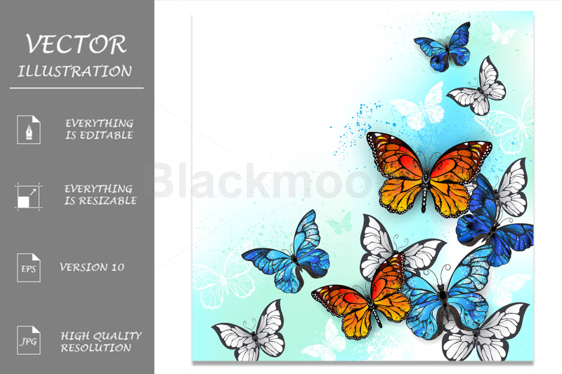 flock-of-multicolor-butterflies