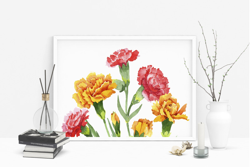 carnation-red-flowers-illustration-watercolor-png