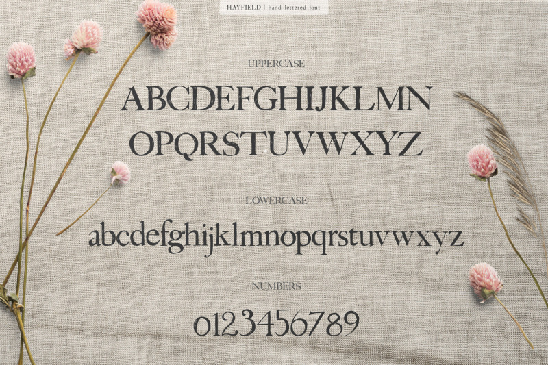 hayfield-hand-lettered-serif-font