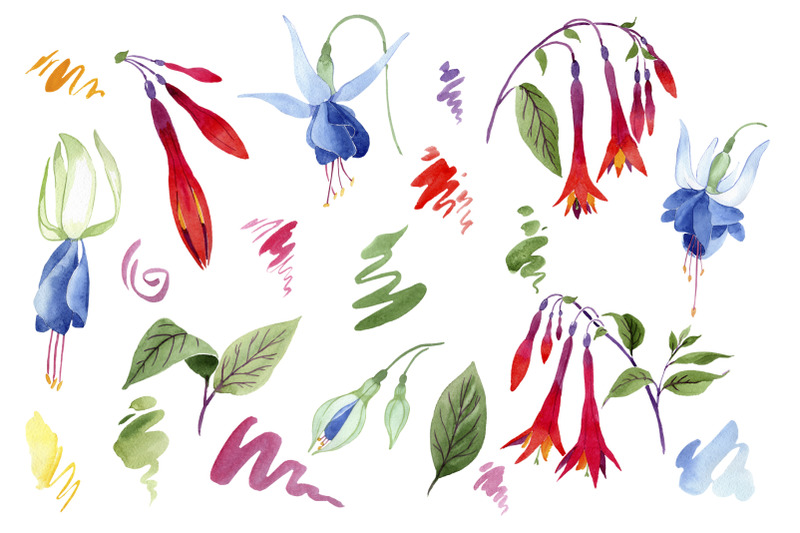 fuchsia-flower-orange-red-watercolor-png