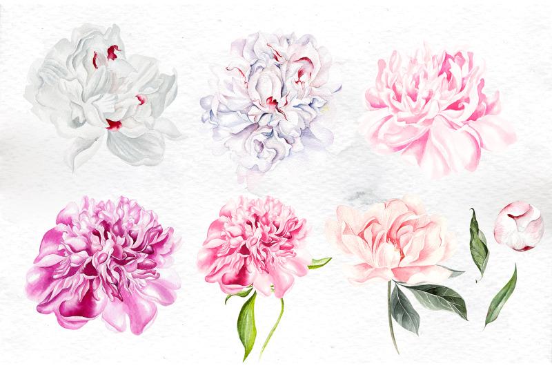 watercolor-peony-amp-lavender