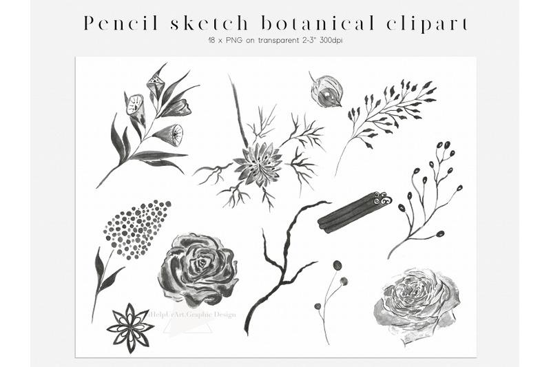 watercolor-floral-design-bundle-boho-flowers-clipart