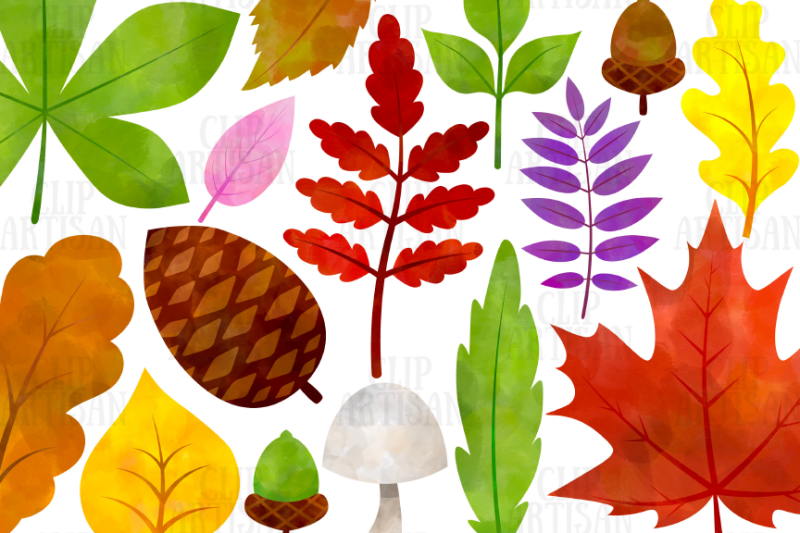 watercolor-fall-leaves-clipart-autumn-floral-clip-art