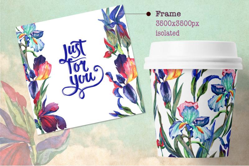 irises-png-watercolor-flower-set