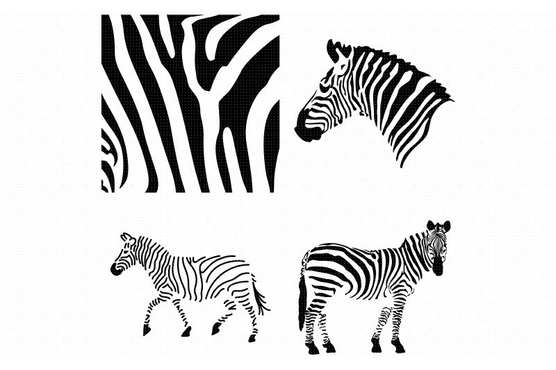 zebra-animal-print-pattern-svg-clipart