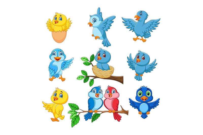 cartoon-birds-collection