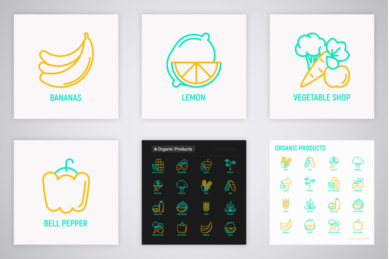 organic-products-16-thin-line-icons-set