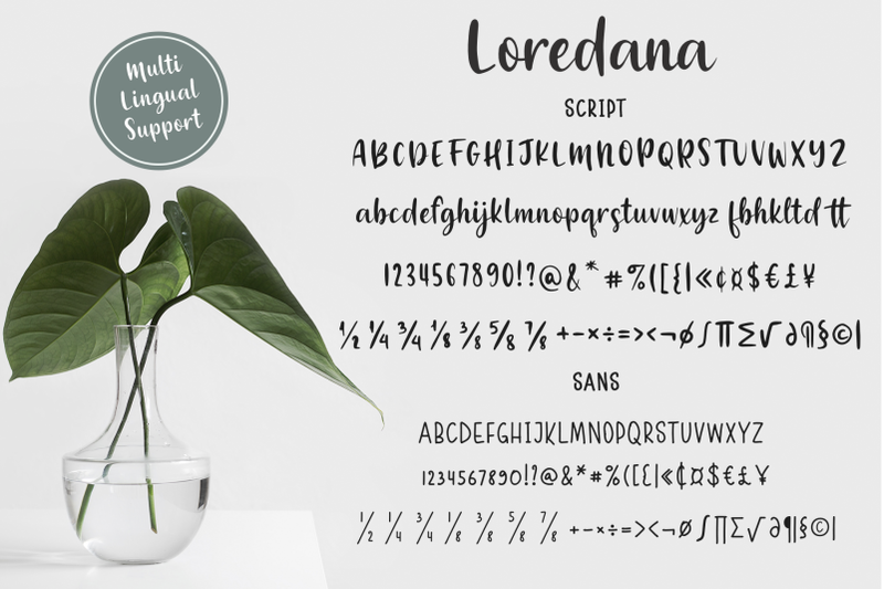 loredana-50-off