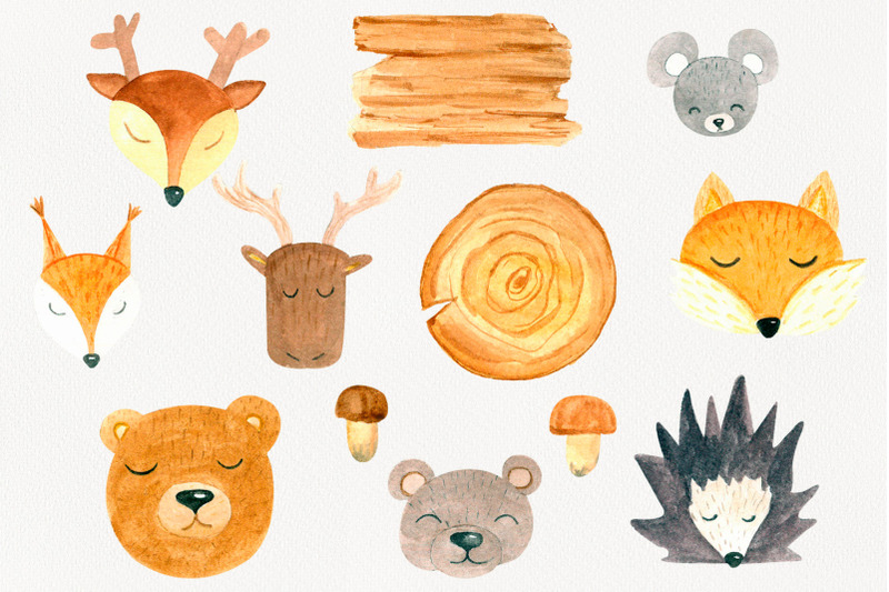 forest-animals-watercolor-clipart