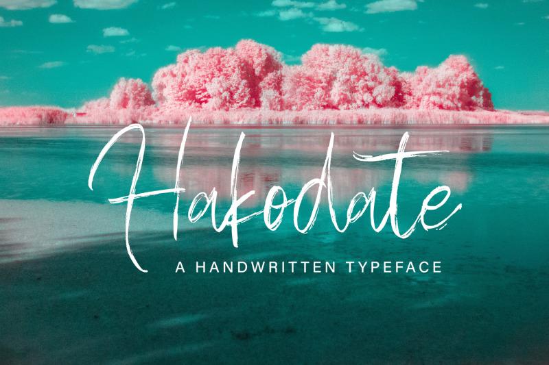 hakodate-handbrush-typeface