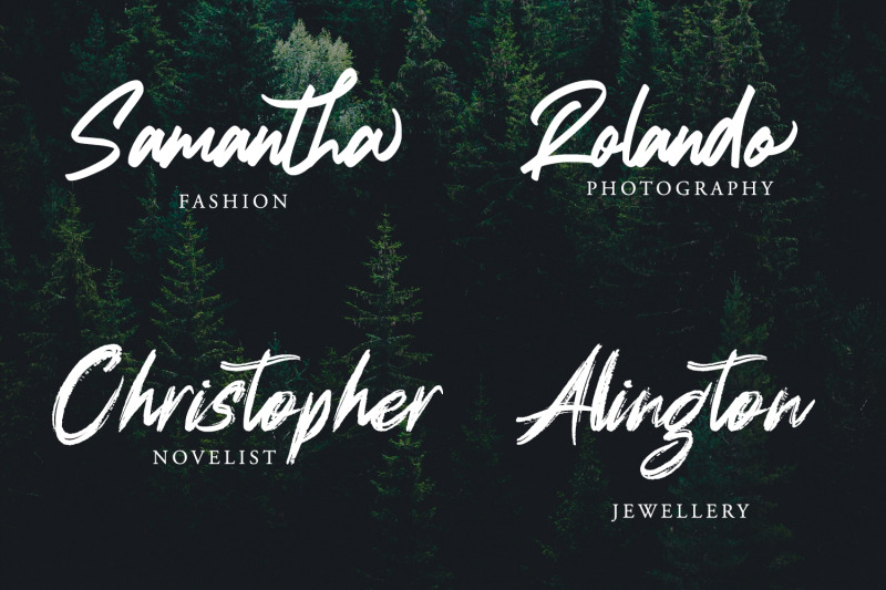 dignity-brush-typeface