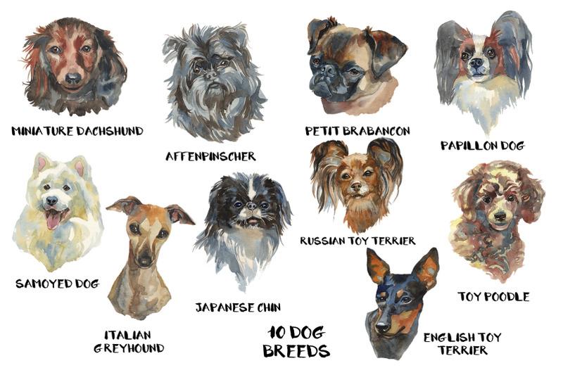 quot-toy-dogs-quot-watercolor-set