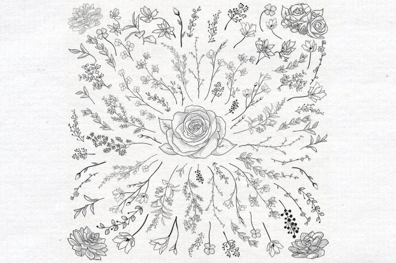 individual-black-hand-drawn-florals-collection
