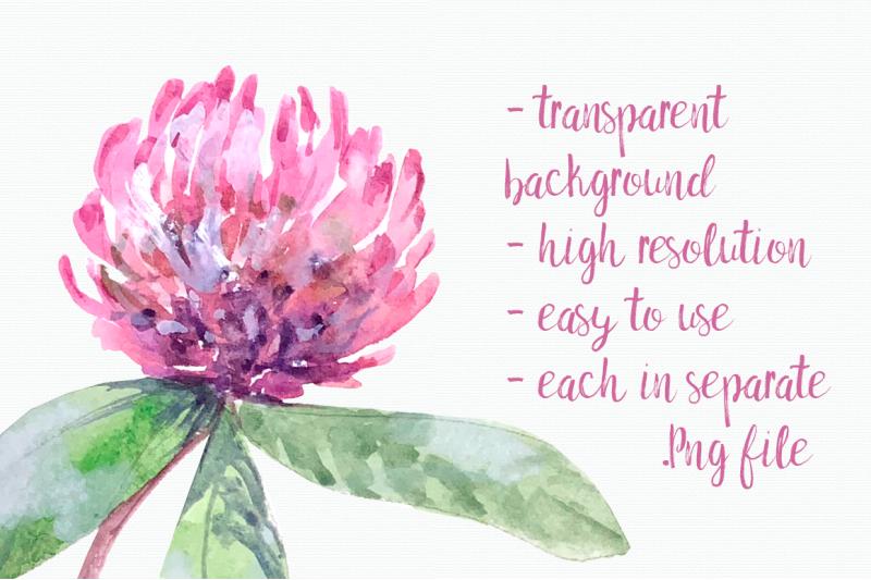 watercolor-honey-garden-clip-art