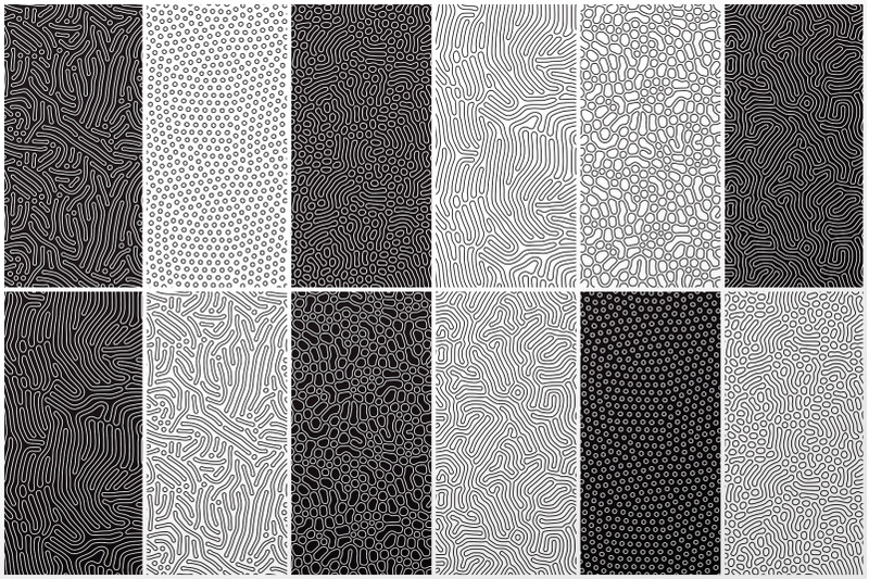 24-organic-seamless-patterns-set