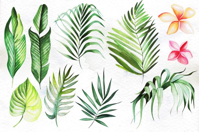 hand-drawn-watercolor-tropic-4