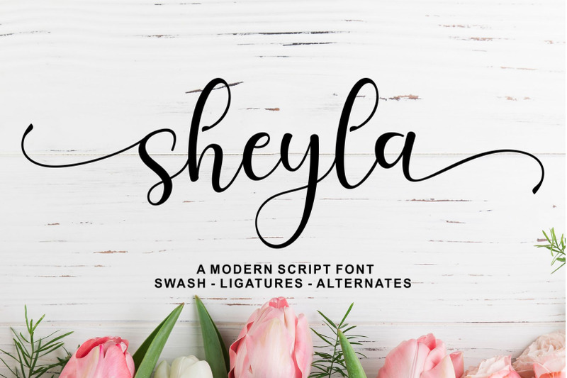 sheyla-modern-script