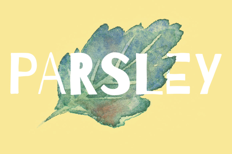 watercolor-parsley-artwork