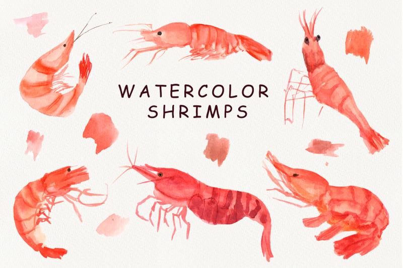 watercolor-shrimps-clipart