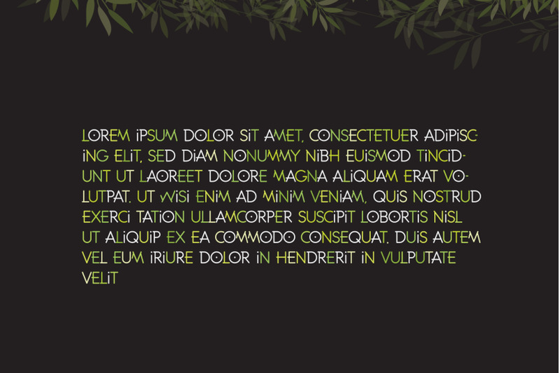 bamboo-line-font