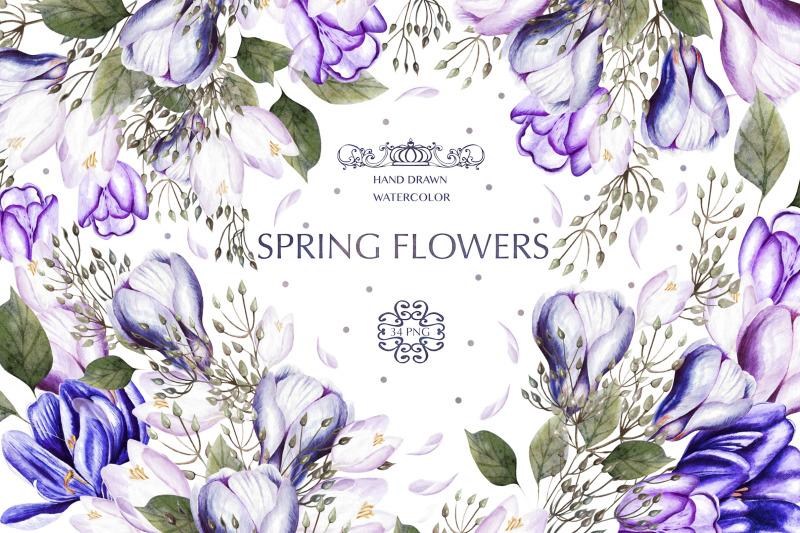 watercolor-spring-tulips-amp-crocus