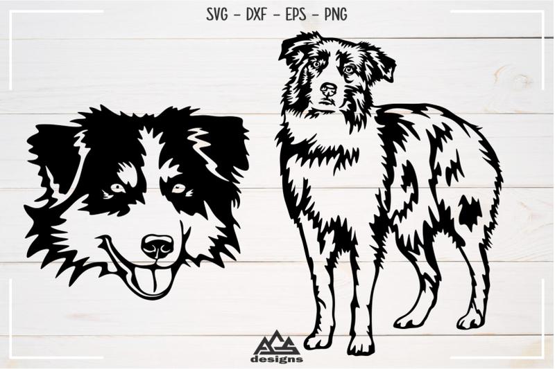 dog-australian-shepherd-svg-design