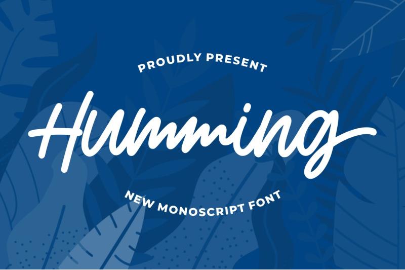 humming-monoscript-font