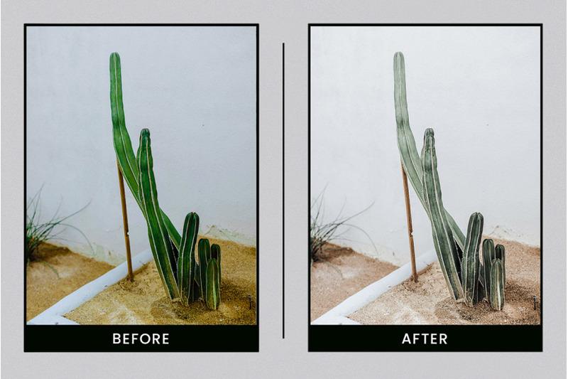 organic-ceramic-mobile-amp-desktop-lightroom-presets