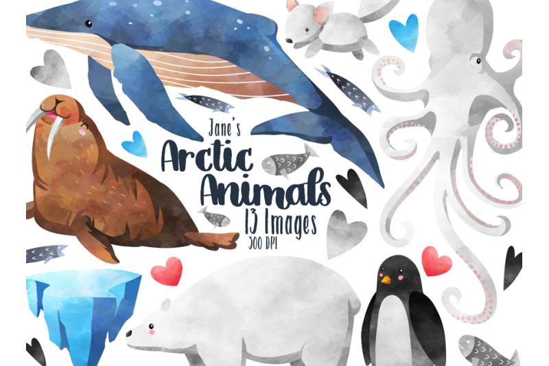 watercolor-arctic-animals-clipart