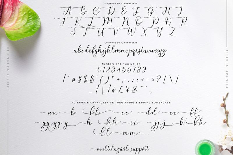 chandler-script