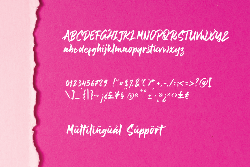 shintaku-beauty-handbrush-font