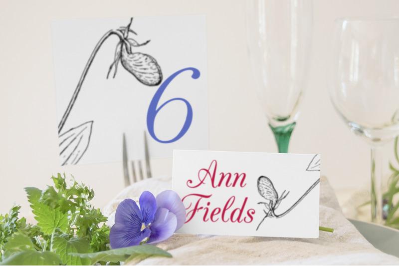 flowers-ladys-slipper-vintage-clipart-graphics