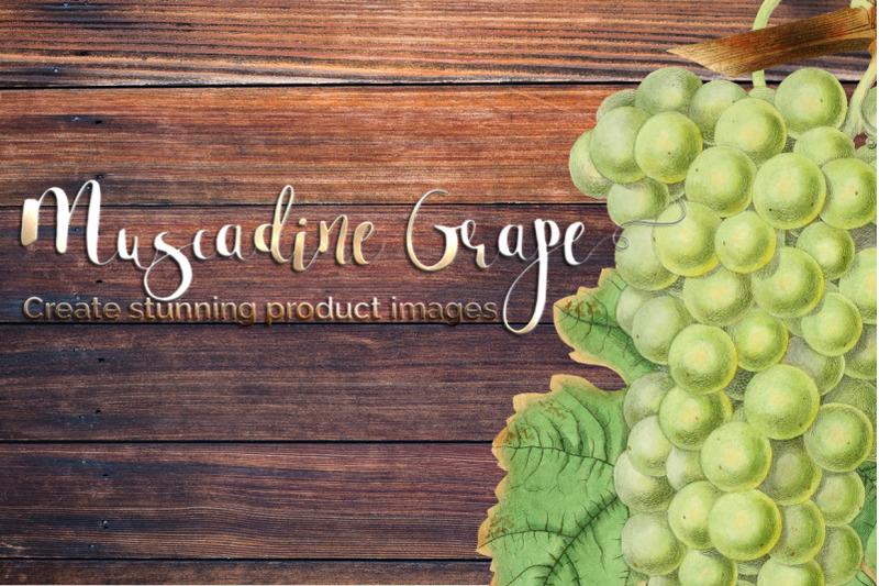grapes-fruit-clipart