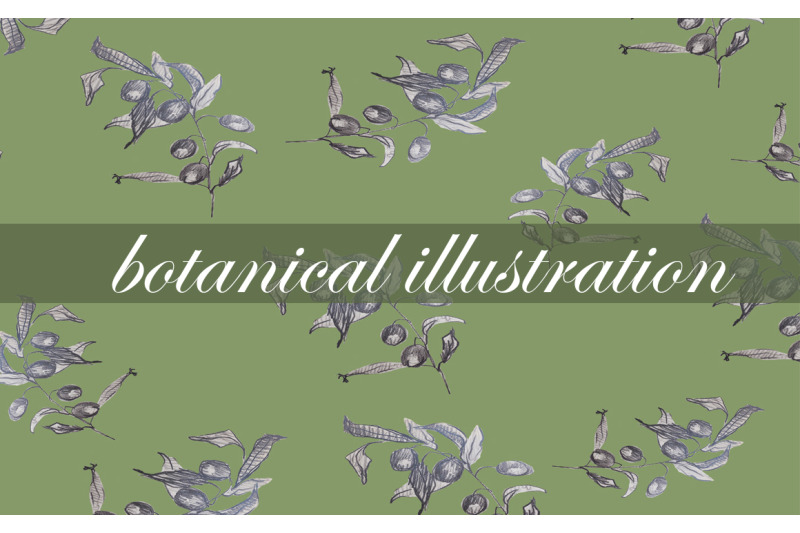 graphic-sketch-flower-and-nature-botanical-illustration