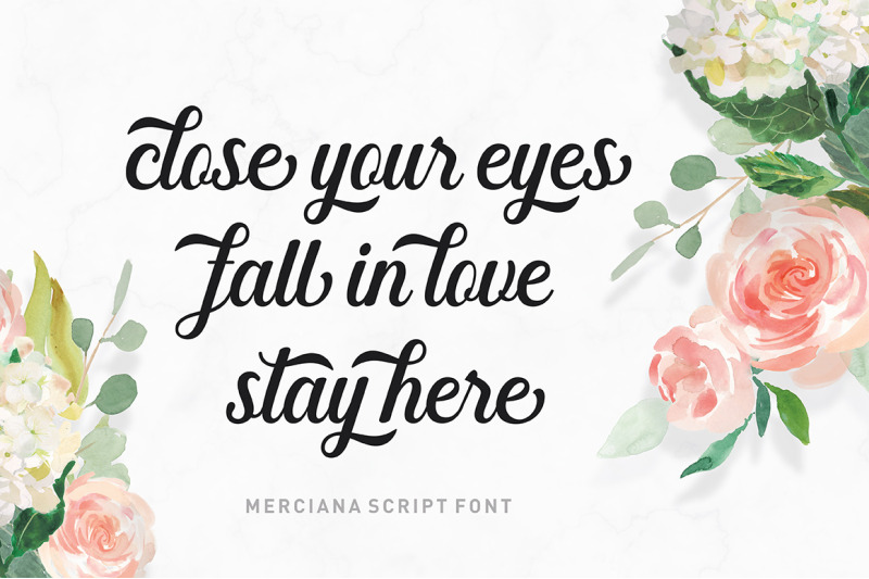 merciana-script