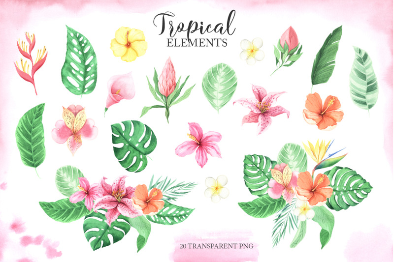 watercolor-tropical-babies-set-1