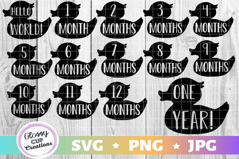 1-12-monthly-milestone-ducklings-svg-png-jpg-stickers