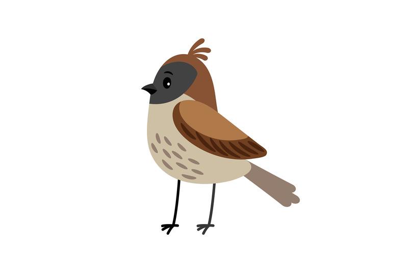 sparrow-funny-cartoon-bird