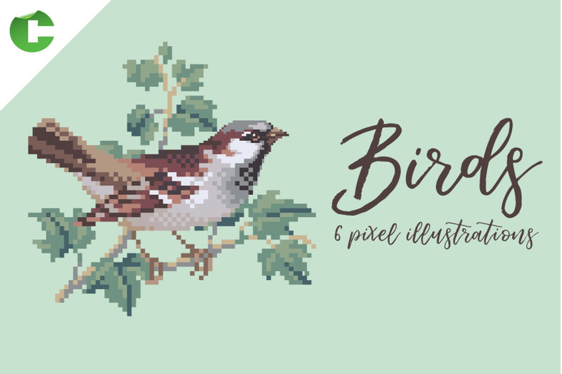 birds-pixel-illustrations