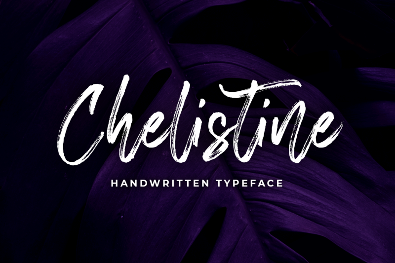 chelistine-handbrush-script